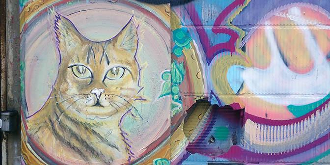 kat street art