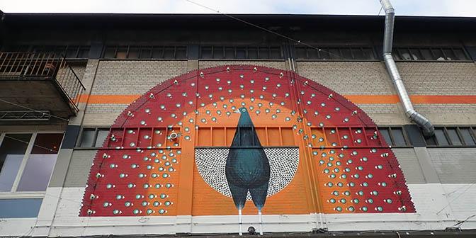 street art zurich pauw